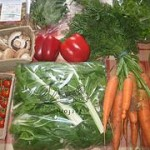 Vermiculture Vegetables
